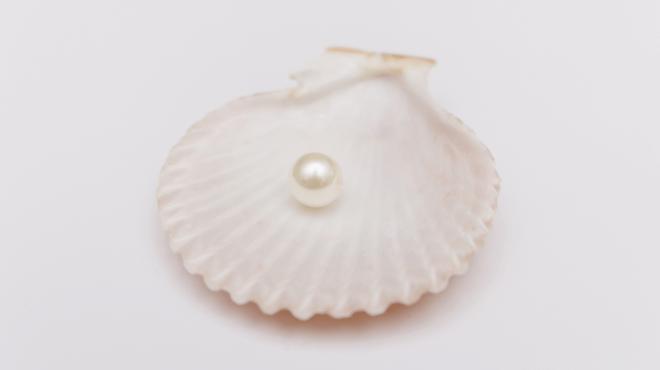 貝殻と真珠